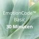 EmotionCode™️ - Basic 30 Minuten