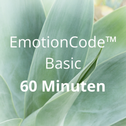 EmotionCode™️ Basic 60 Minuten