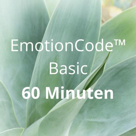 EmotionCode™️ Basic 60 Minuten