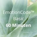 EmotionCode™️ - Basic 60 Minuten