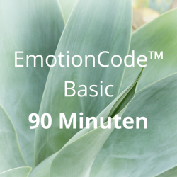 EmotionCode™️ - Basic 90 Minuten