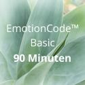 EmotionCode™️ - Basic 90 Minuten