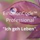 EmotionCode™️ - Professional