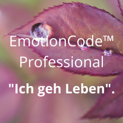 EmotionCode™️ - Professional